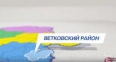 "Телепроект ""Спадчына"" - Ветка"
